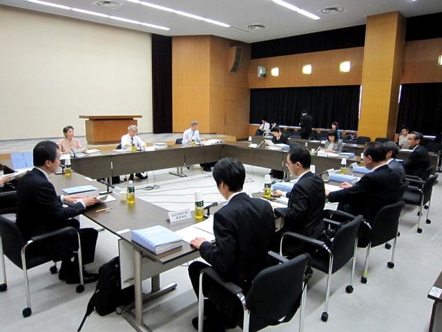 4月28日に開催された、「第12回 厚生科学審議会・疾病対策部会・指定難病検討委員会」