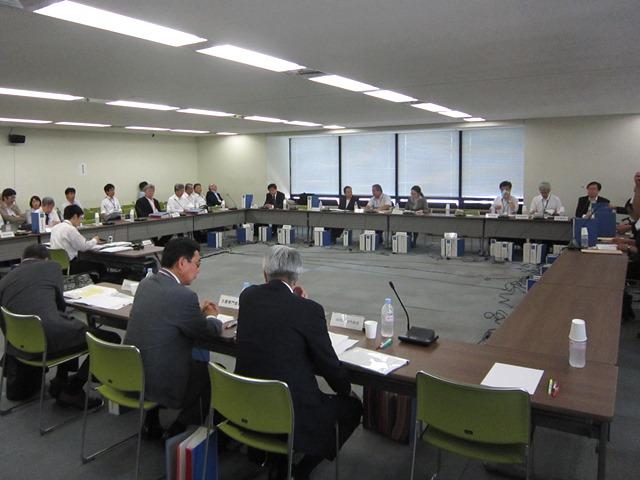 6月10日に開催された、「第104回 中央社会保険医療協議会・薬価専門部会」