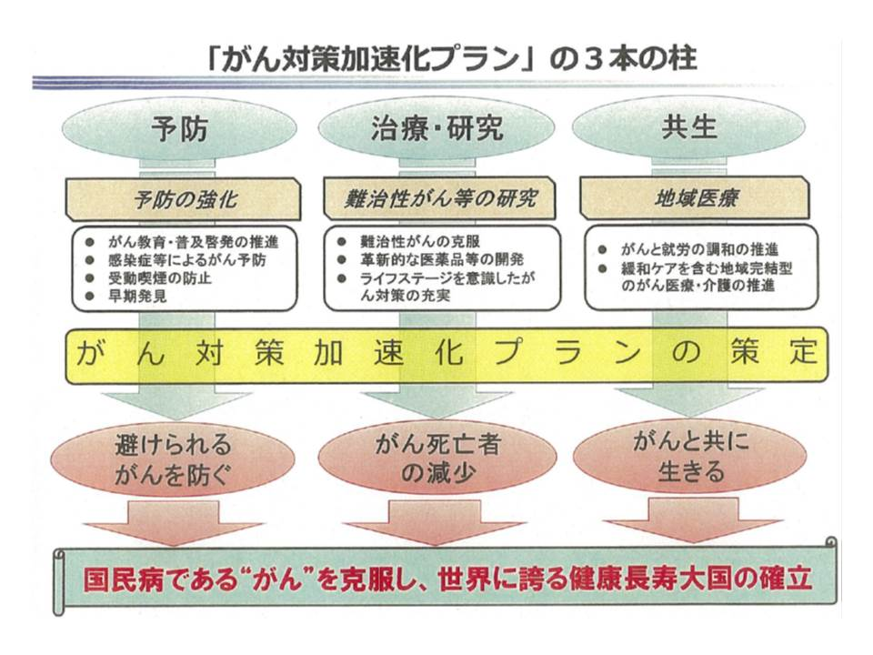 塩崎恭久厚生労働大臣は、(1)予防(2)治療・研究(3)共生―の3本を加速化プランの柱とすることを決定