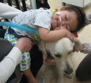 ベイリーを抱きしめる小児患者(SOK提供)