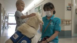 ヨギと触れ合う小児患者と鈴木氏(SOK提供)