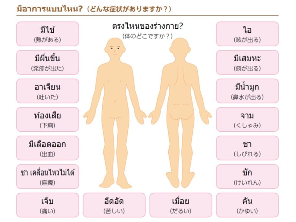 日本語に通じていない外国人であっても、どういった症状(ピンクの部分)が体のどの部位に生じているかを指させば、外国語に通じていない医療関係者にも状況を一定程度伝えることができる(図はタイ語版)