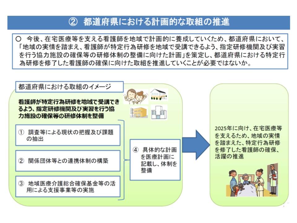 特定行為研修を行う施設(指定研修施設)の整備に関する計画を医療計画に記載する際のイメージ(その1)
