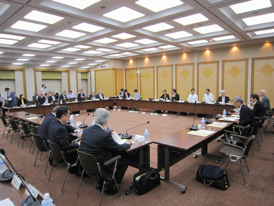 6月14日に開催された、「第134回 中央社会保険医療協議会 薬価専門部会」