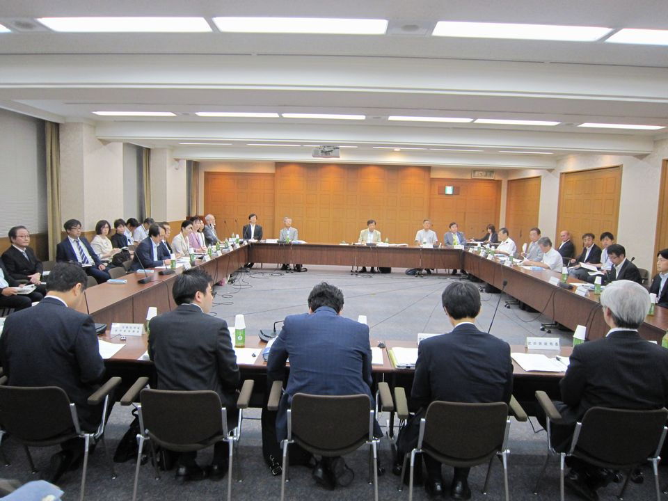 8月9日に開催された、「第4回 今後の医師養成の在り方と地域医療に関する検討会」
