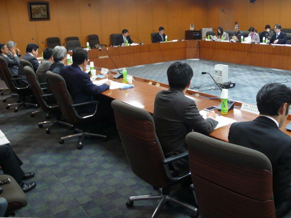 1月29日に開催された、「第6回 今後の医師養成の在り方と地域医療に関する検討会」