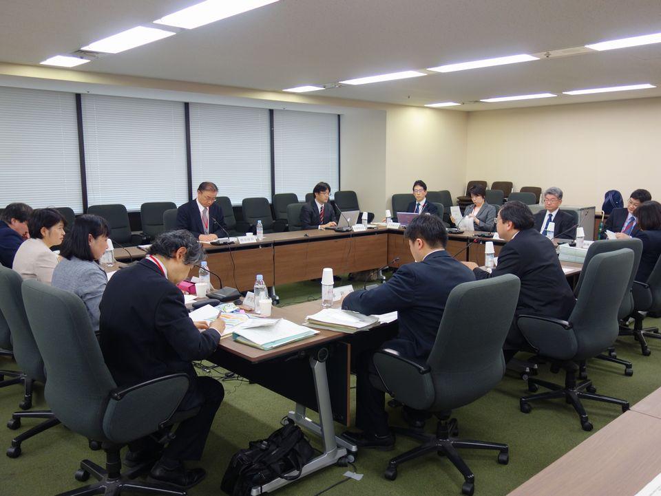 3月16日に開催された、「第6回 がん診療連携拠点病院等の指定要件に関するワーキンググループ」