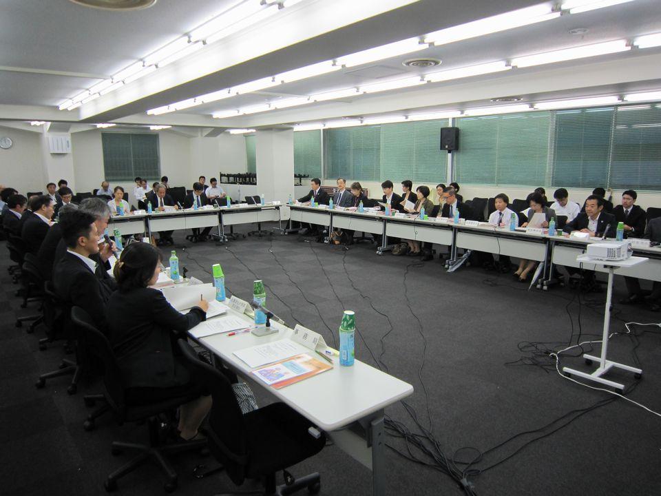 9月26日に開催された、「第8回 高齢者医薬品適正使用検討会」