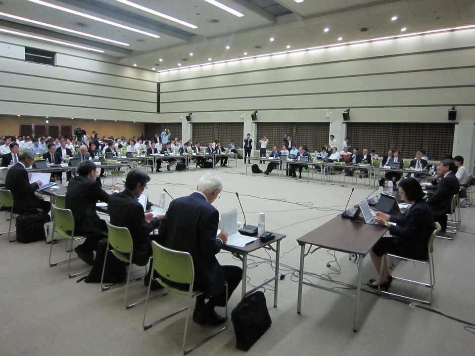 5月29日に開催された、「第152回 中央社会保険医療協議会 薬価専門部会」